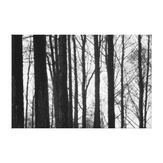Hiver noir et blanc toiles