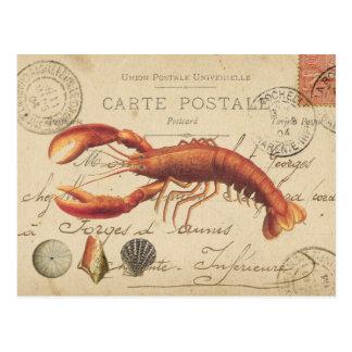 Homard vintage et carte postale de coquillages