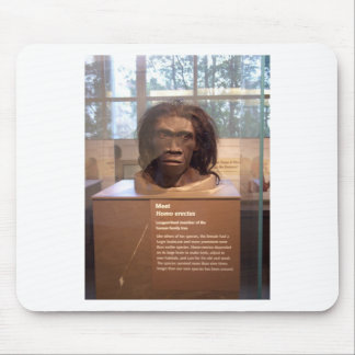 Homo erectus ; objet exposé de musée tapis de souris