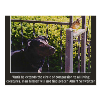 Hond & Vogel & het Citaat van het Medeleven Briefkaart