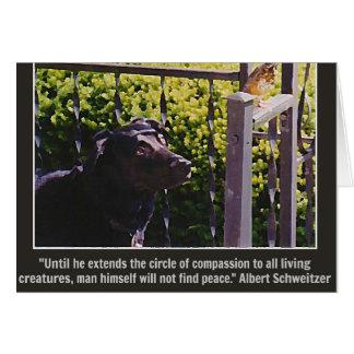 Hond & Vogel & het Citaat van het Medeleven Wenskaart