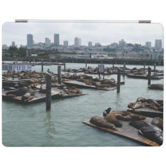 Horizon de ville d'otaries de San Francisco et de Protection iPad