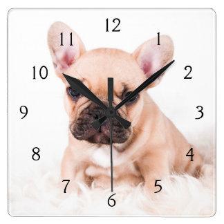 Horloge Carrée Bouledogue français