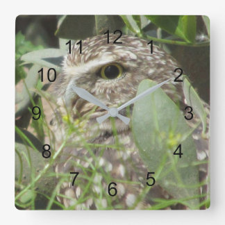 Horloge Carrée Creuser le hibou