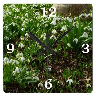 Horloge Carrée Fleurs blanches de ressort des perce-neiges II