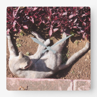 Horloge Carrée gato