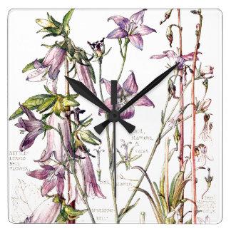 Horloge Carrée La famille de campanule botanique fleurit