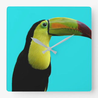 Horloge Carrée Photo moderne animale tropicale de toucan