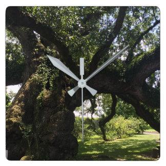 Horloge de carré de chêne de Sallier