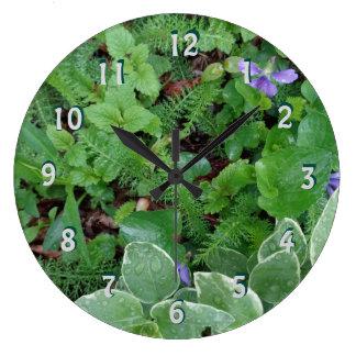 Horloge naturelle de fougères de jardin de Forest