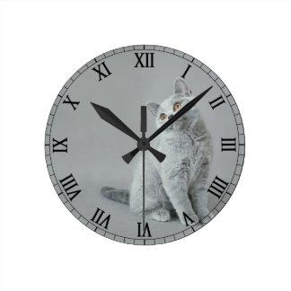 Horloge Ronde Chaton britannique de shorthair
