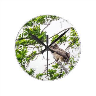 Horloge Ronde Jeune hibou sur une branche d'arbre d'érable
