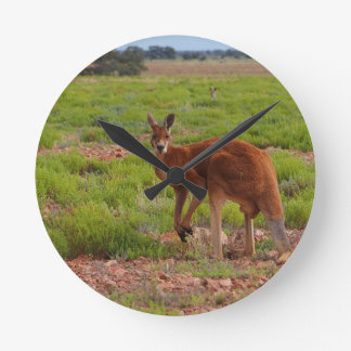 Horloge Ronde Kangourou rouge australien