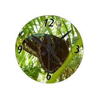 Horloge Ronde Photographie tropicale de nature de papillon bleu