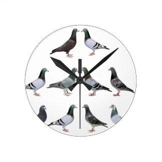 Horloge Ronde Pigeons voyageur champions