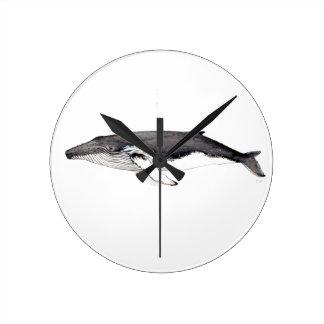 Horloge Ronde Yubarta, baleine bossue