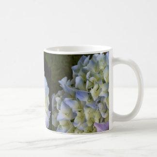 Hortensia de bleu de tasse de café