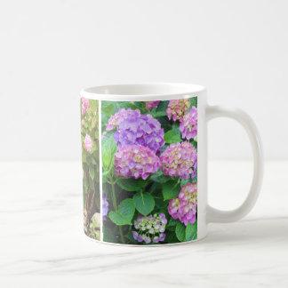 Hortensias et tasse de café de lis