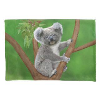 Housse D'oreillers Ours de koala aux yeux bleus de bébé