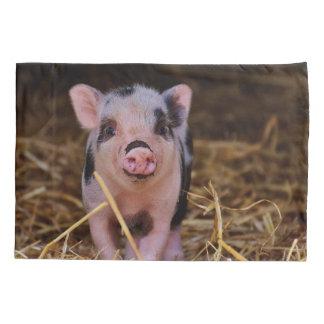 Housse D'oreillers Porc mignon doux