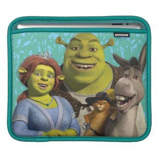 HOUSSE iPad