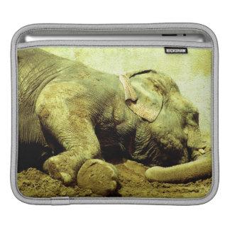 Housse iPad Douille asiatique d'Éléphant-iPad, horizontale