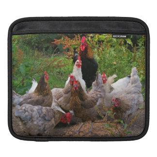Housse Pour iPad Douille horizontale d'iPad de poulets drôles de