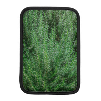 Housse Pour iPad Mini Rosemary rougeoyante Buissons