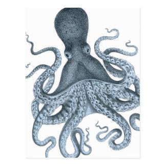 Illustration vintage de poulpe de gris bleu carte postale