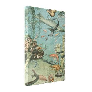 Illustrations de vie marine par la toile d'Adolph