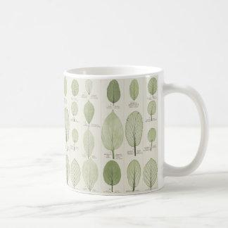 Illustrations vintages de feuille mug