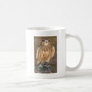 Image 1 de hibou mug