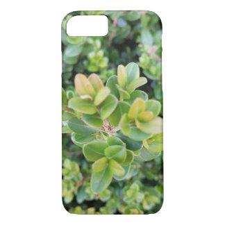 image de plante sur le coque iphone