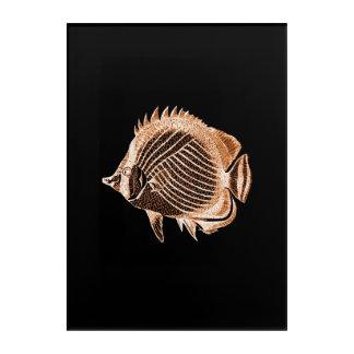Impression En Acrylique Aquarelle nautique côtière noire de poissons