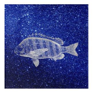 Impression En Acrylique Gris argenté de marine d'océan de mer de poissons