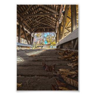 Impression Photo À l'intérieur de la cavité de vison couverte pont,