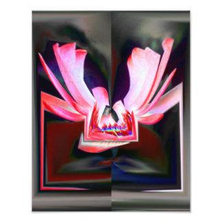 Impression Photo Abrégé sur papillon