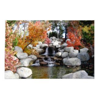 Impression Photo Affiche colorée d'arbres et de roches de cascade