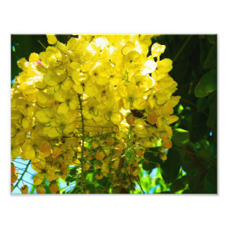 Impression Photo Affiche tropicale jaune de fleurs