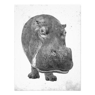 Impression Photo Affiche vintage/copie d'hippopotame de style !