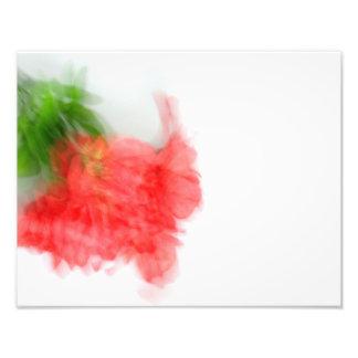 Impression Photo Alstroemeria rouge Bush dans le résumé