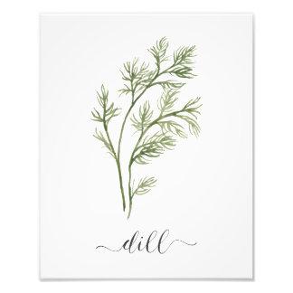 Impression Photo Aneth botanique d'impression d'herbe d'aquarelle