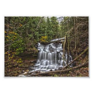 Impression Photo Automnes de Wagner, Michigan