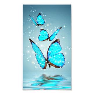Impression Photo beau papillon bleu brillant