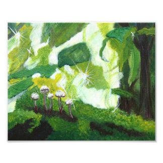 Impression Photo Champignons verts