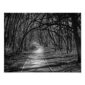 Impression Photo Chemin