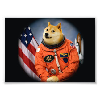 Impression Photo chien d'astronaute - doge - shibe - memes de doge