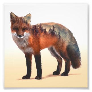 Impression Photo Double exposition de Fox - art de renard - renard
