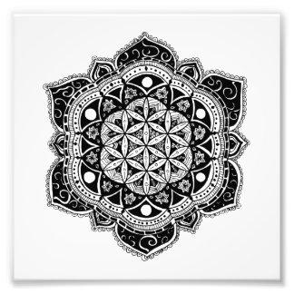 Impression Photo Fleur de mandala de la vie