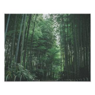 Impression Photo Forêt en bambou